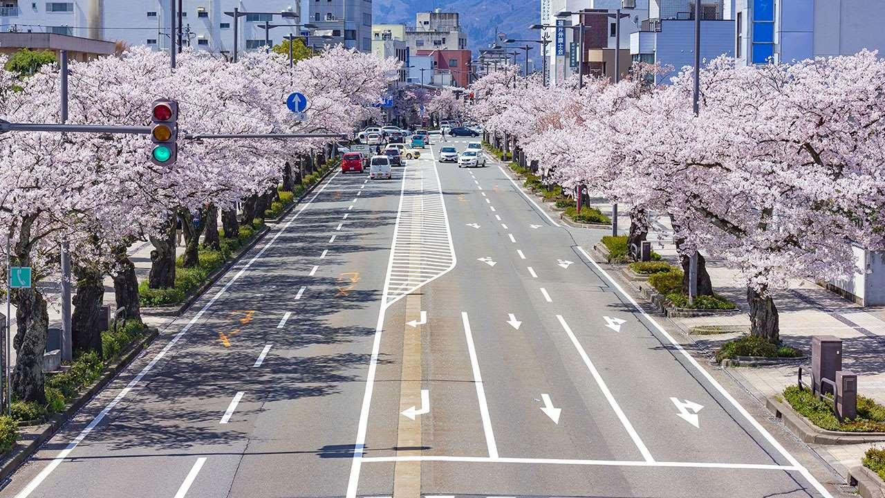Идеальные японские дороги